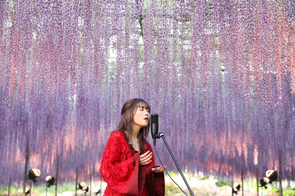 J-music Hikari